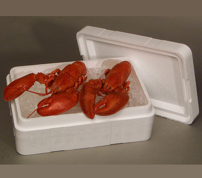 Seafood Shipping Packaging